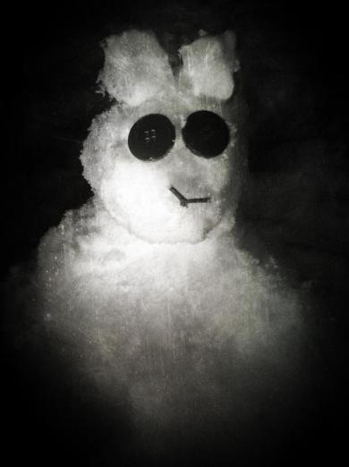 snow-bunny